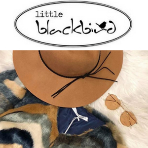 Little Blackbird